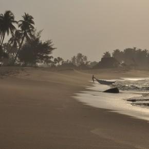 Příroda na Srí Lance (11)