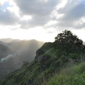 Příroda na Srí Lance (45)