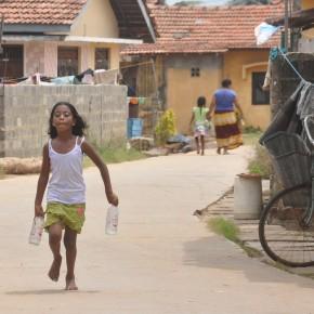 Srílančané (19)