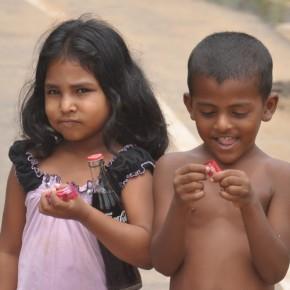 Srílančané (21)