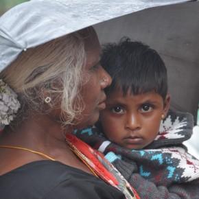 Srílančané (36)