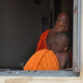 Srílančané (66)