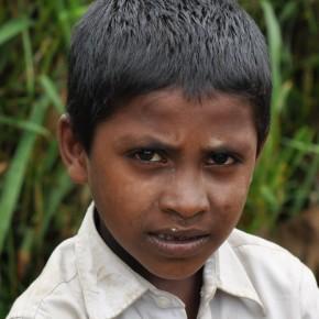 Srílančané (77)