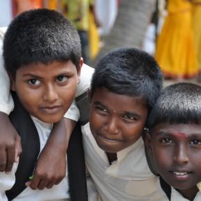Srílančané (80)