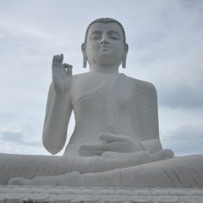 Srílanské svatostánky (14)