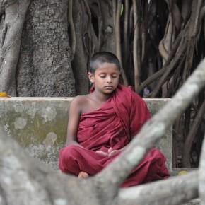 Srílanské svatostánky (16)