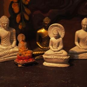 Srílanské svatostánky (53)