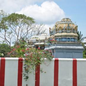 Srílanské svatostánky (6)
