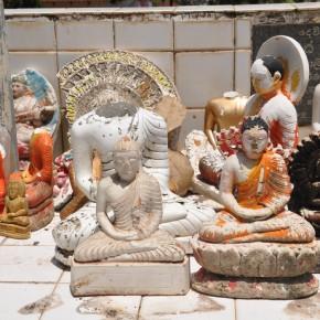 Srílanské svatostánky (7)