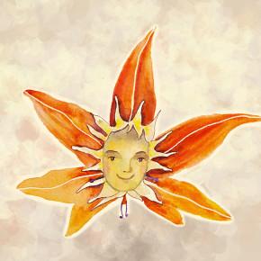 Slunečníček plní přání