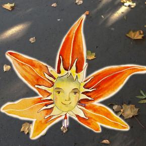 Slunečníček plní přání I