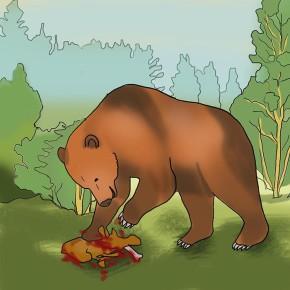 Jeskynní medvěd